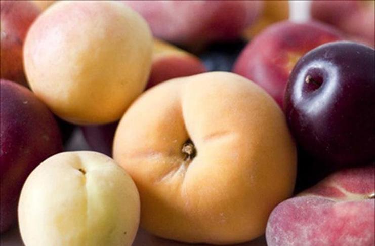 La dimensión internacional de la fruta de la Región de Murcia