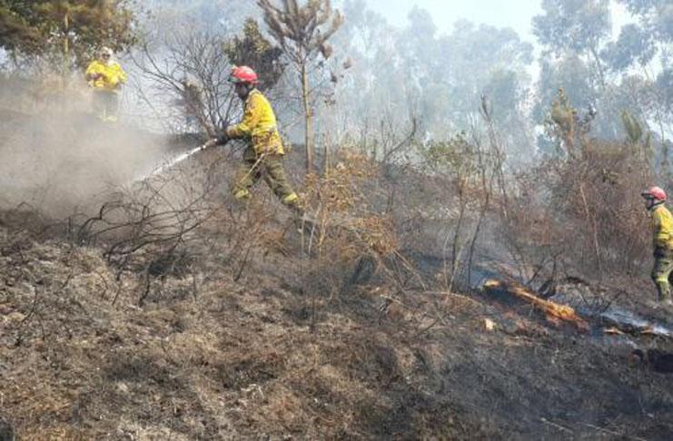 Agua-suelos-incendios-forestales-2