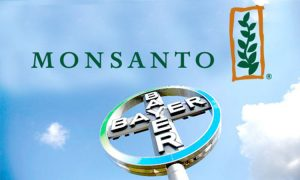 BAYER COMPRA MONSANTO 2