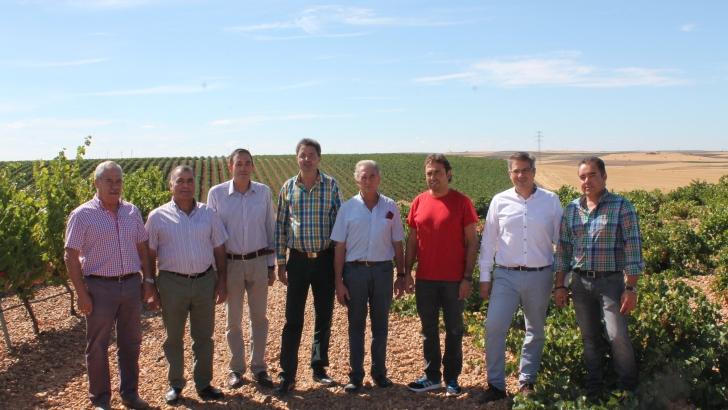 UCCL y URCACYL  se unen para garantizar la paridad entre bodegas y viticultores en la DO Rueda