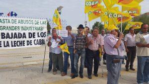 CABREROS PROTESTA CARREFOUR 2