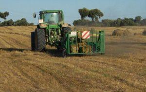 SECTOR AGRARIO 2