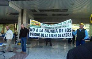 LECHE DE CABRA Y OVEJA SUBIDA 3