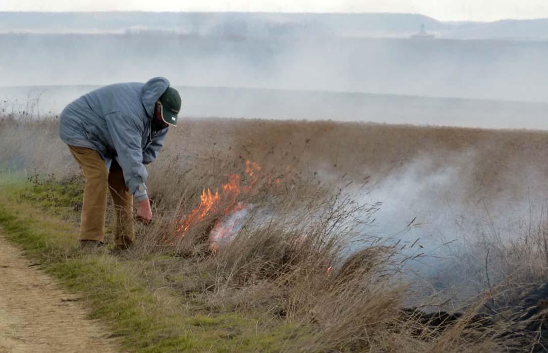 Primeras denuncias por las quemas ilegales de rastrojos detectadas por los satélites usados para la PAC