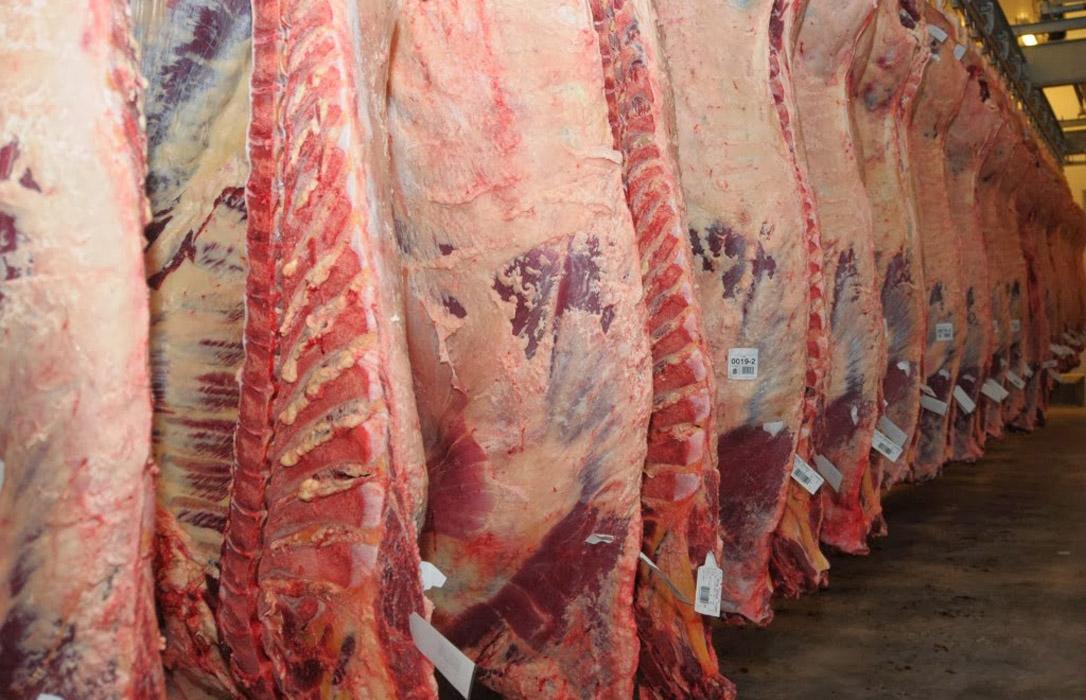 España consigue la apertura del mercado de Filipinas a la carne de vacuno y renueva la de porcino