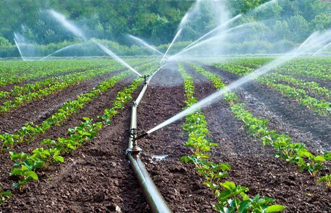 Resultado de imagen para sistema de riego automatizado AGRICULTURA