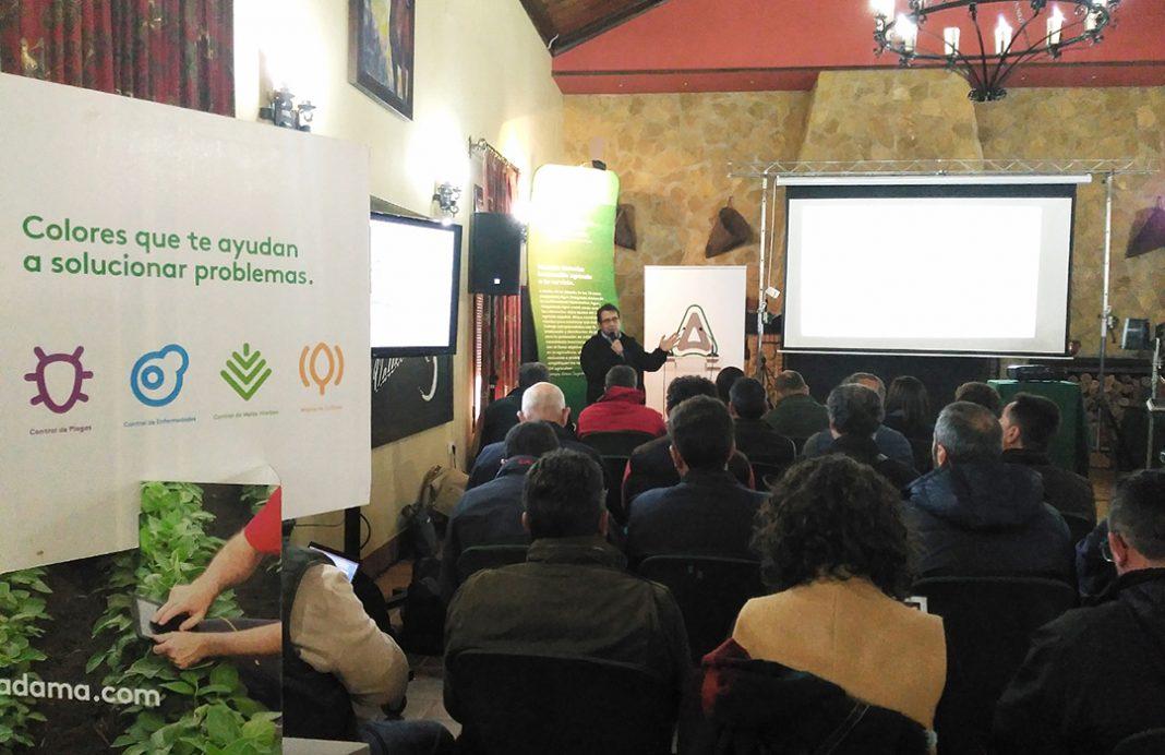 Digital Crop Care: traduciendo el idioma del campo al agricultor mediante el uso de tecnologías big data