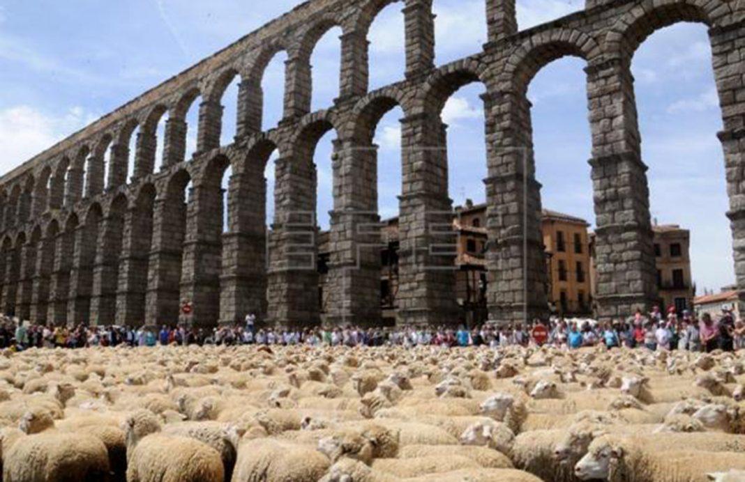 La trashumancia: el nuevo Patrimonio Cultural Inmaterial de España con el viejo problema de la falta de apoyos