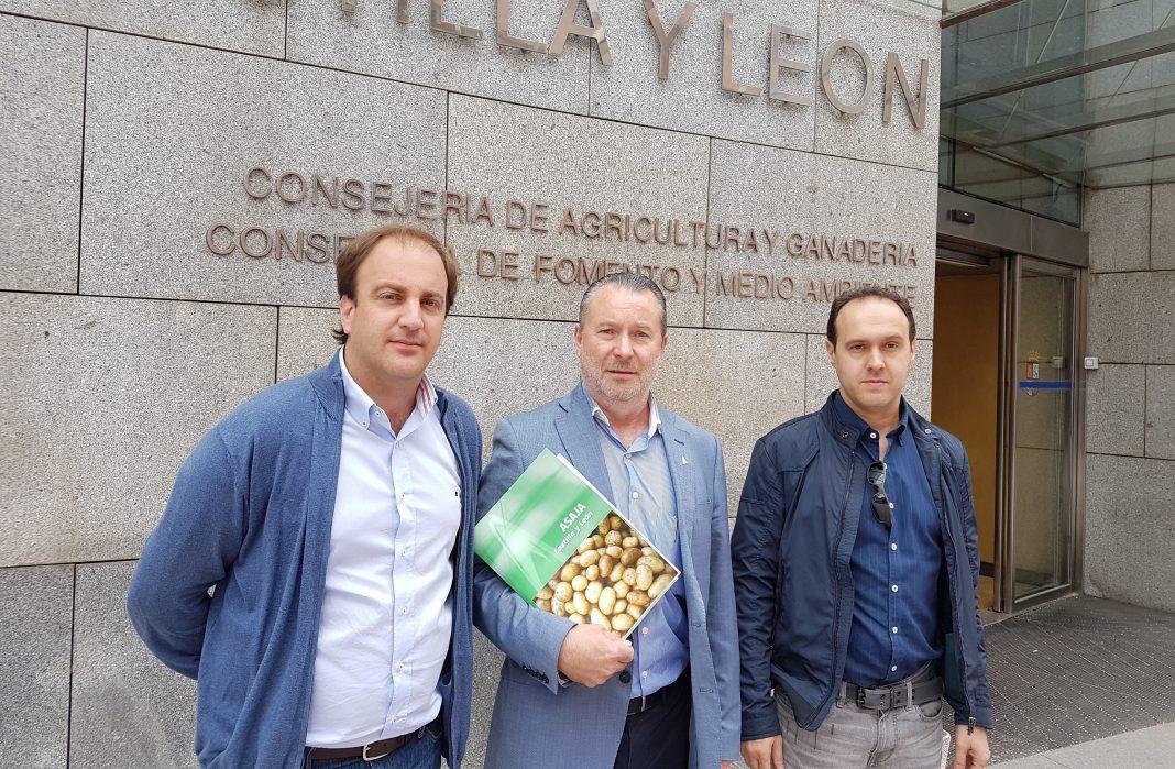 Urcacyl cree que la Interprofesional de la patata puede ser finalmente una realidad en 2017