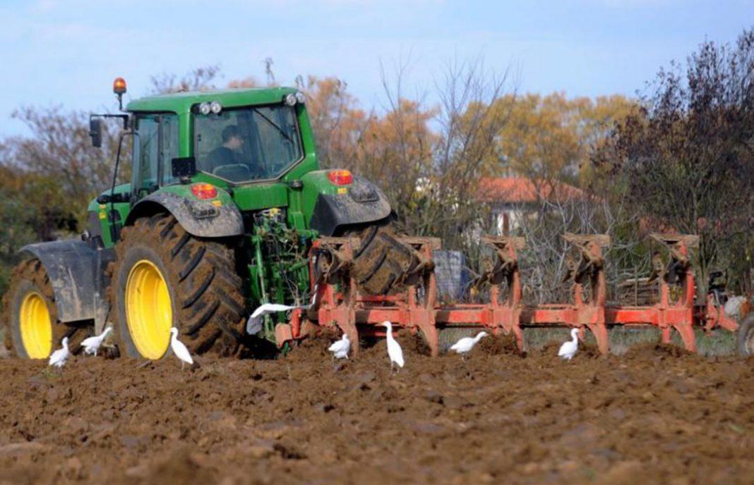 CLM abonará 22,5 millones a agricultores y ganaderos en ayudas ecológicas, reforestación, ZEPA y de las zonas Red Natura