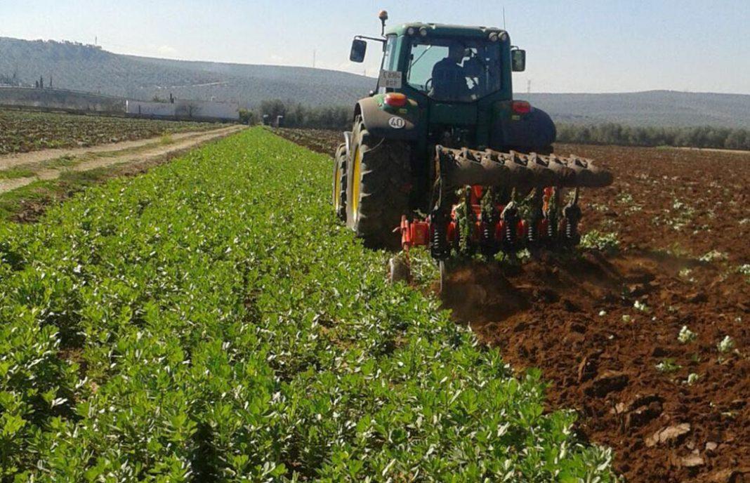 El pago de ayudas directas de la PAC ya ha dejado 4.000 millones en los bolsillos de agricultores y ganaderos