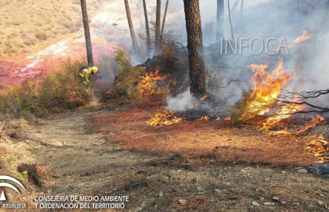 Tres meses de cárcel y 3.000 € de multa por causar un incendio de matorral con una quema agrícola no autorizada