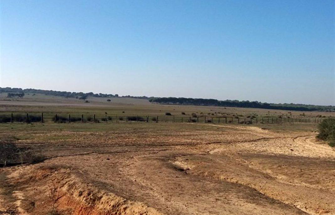 Andalucía pide al Gobierno que incluya a las cuencas intracomunitarias en el decreto de sequía