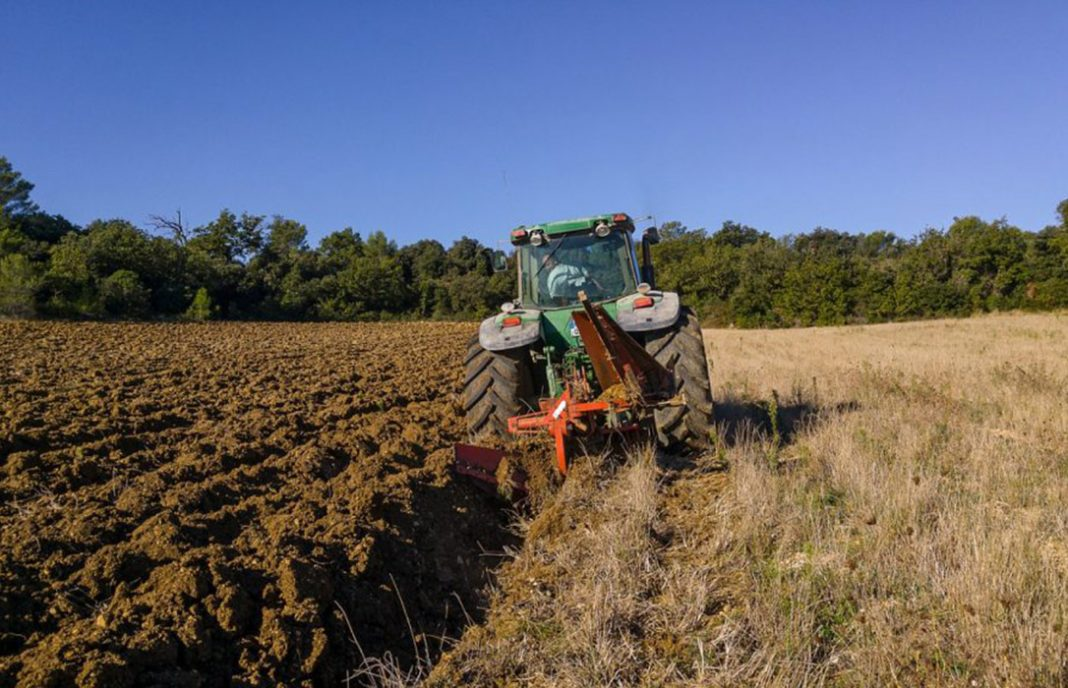 Tejerina destaca que la Renta Agraria alcanza los 28.462 millones en 2017, al crecer un 4,93%