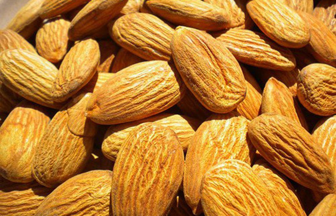 Piden recuperar la ayuda nacional a los frutos secos, considerando la almendra y la nuez como cultivos estratégicos