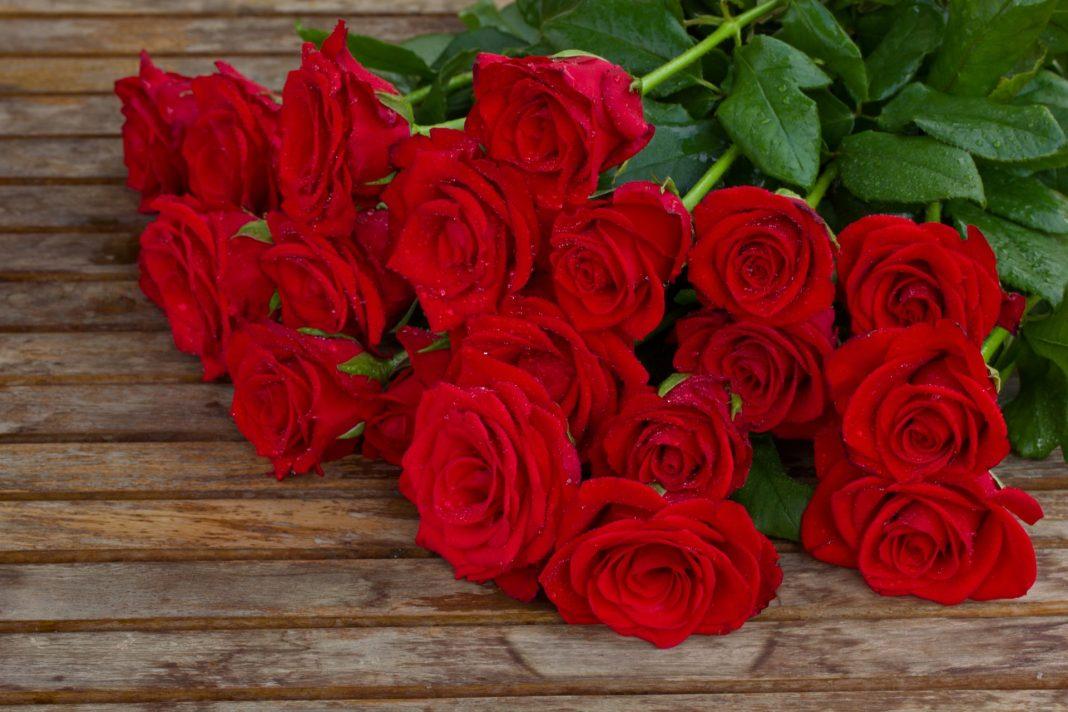 Más rosas este San Valentín y más de producción nacional