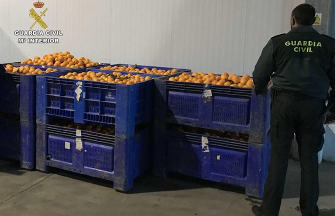 Diez detenidos por robo de naranjas tras localizarlos in fraganti con 2.200 kilos en una finca Huelva