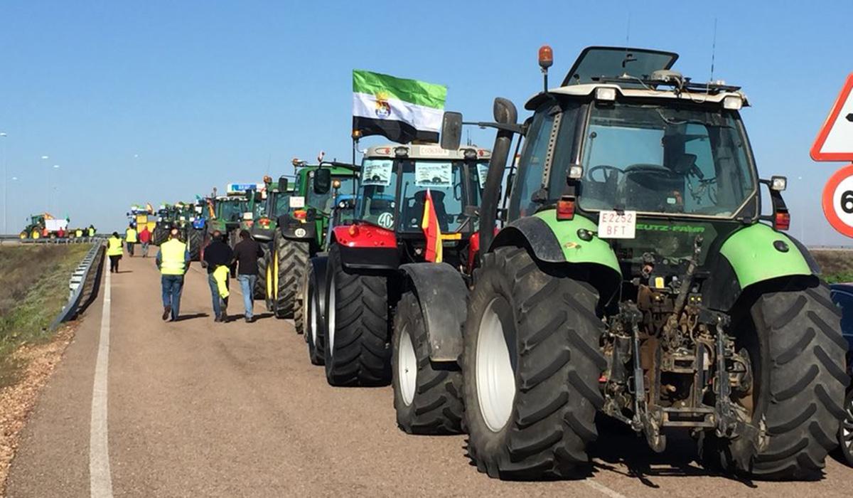 Procesión del Dolor: Medio millar de tractores paralizan las Vegas Altas para exigir unos precios dignos