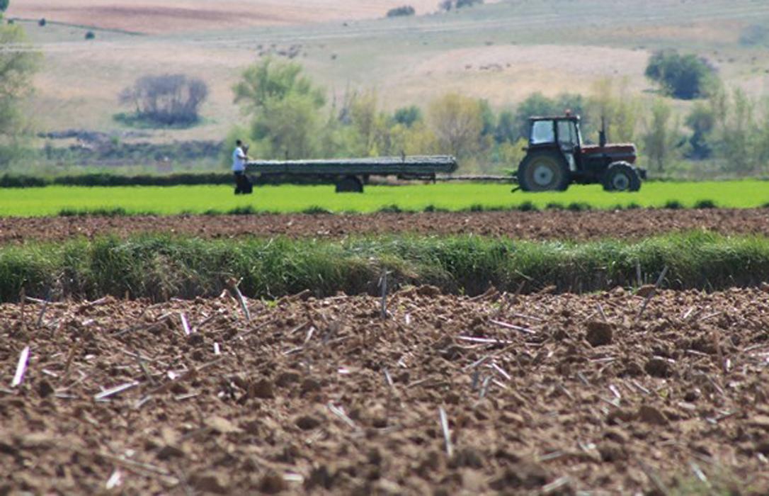 Los agricultores que soliciten el adelanto de la PAC tendrán una rebaja en el interés del 2,5 al 2,25%