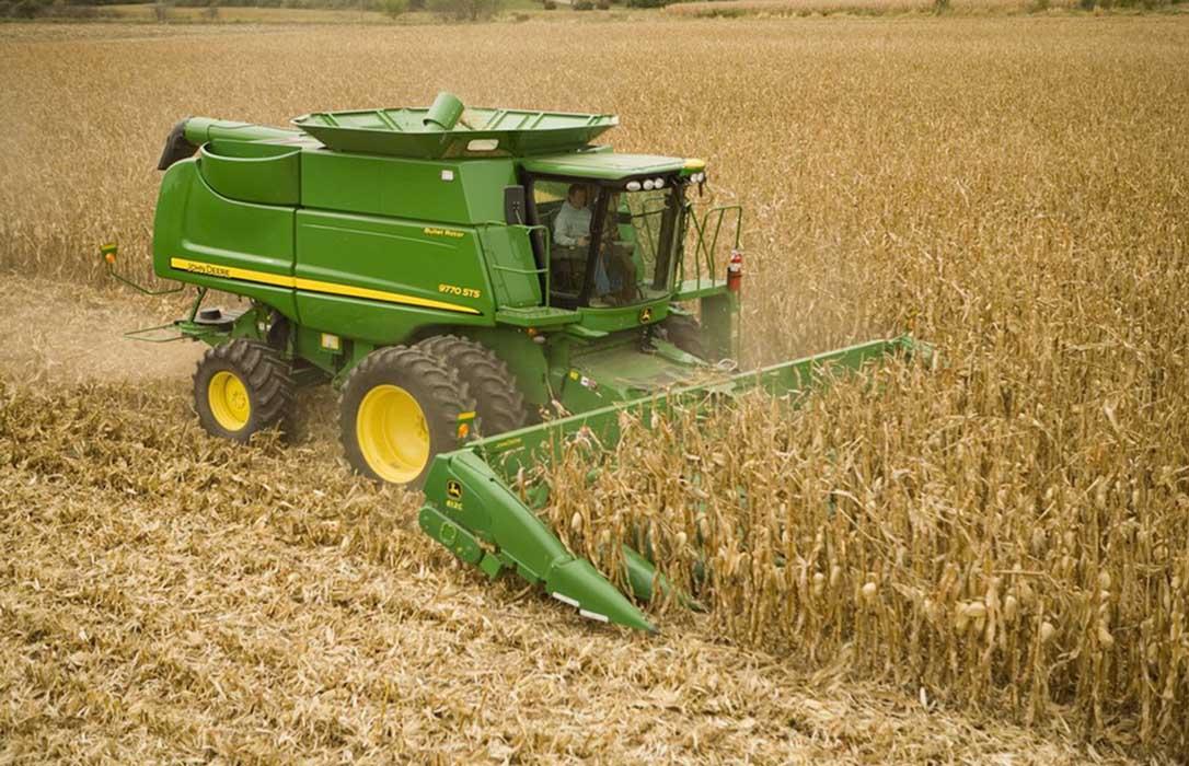 El sector de trigo duro advierte de que la falta de rentabilidad está acabando con las siembras