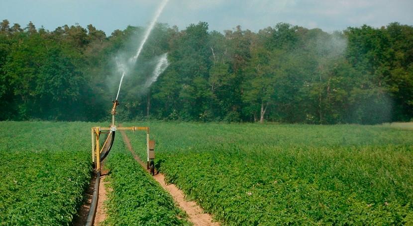Derivaciones de ramblas y cauces permitirán que las aguas pluviales puedan ser reutilizadas por los regantes
