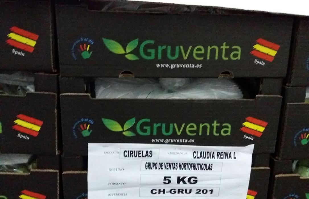Gruventa desplegará en Fruit Attraction su apuesta empresarial por la agricultura sostenible