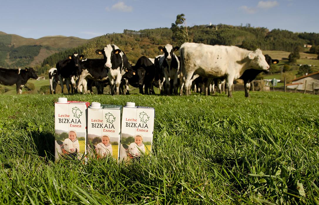 Varapalo de Competencia: La obligación de indicar el origen de la leche en el etiquetado puede ser una restricción
