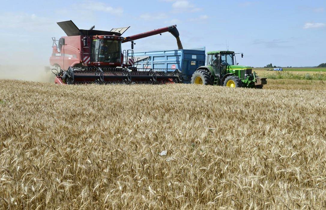 El CES europeo lo tiene claro: «Los pagos directos de la PAC solo deberían destinarse a los agricultores activos»