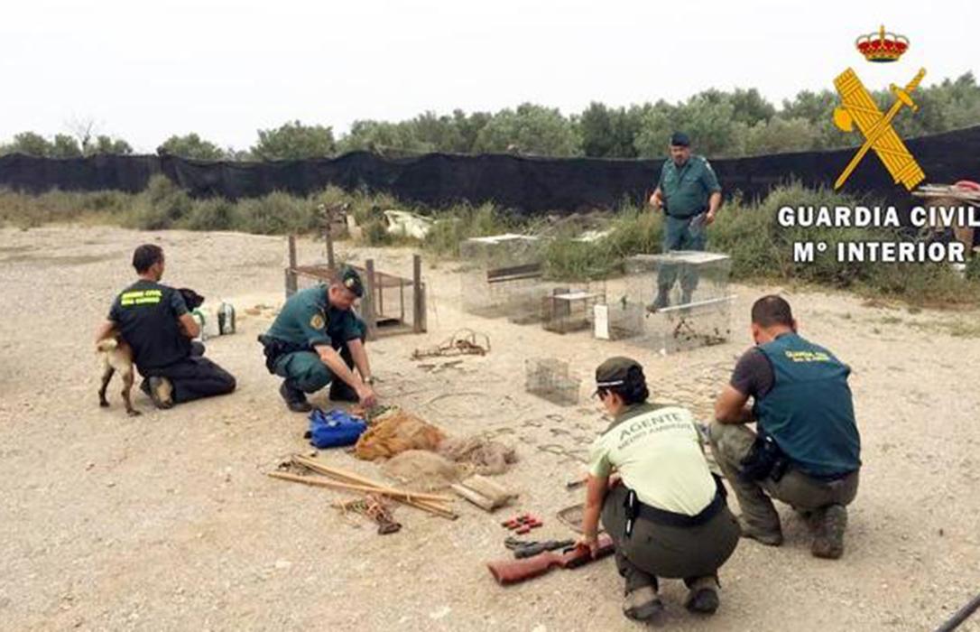 La Guardia Civil localiza fitosanitarios y artes prohibidas tras hallar varios perros envenenados