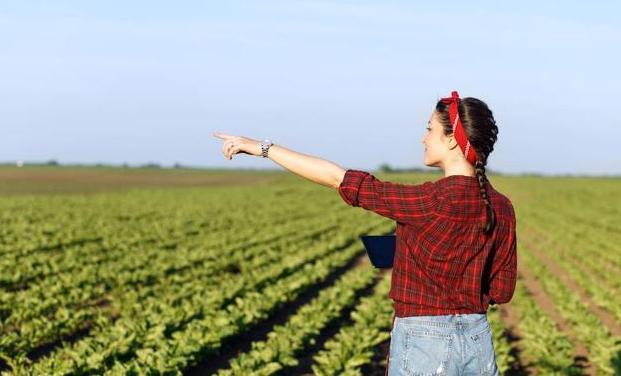 Ya está en marcha Ruraltivity, la lanzadera para el emprendimiento rural