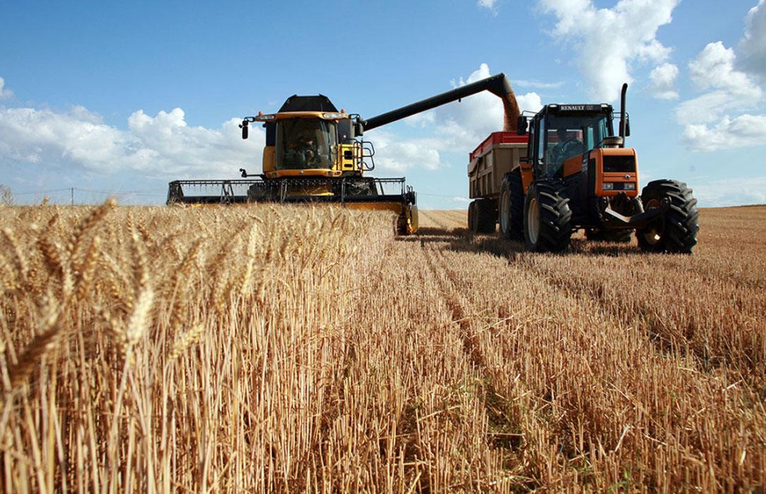 Los mercados internacionales de cereal están inmersos en una gran volatilidad mientras suben los precios