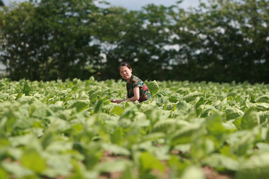 Una agricultora de Burgos, entre los jóvenes agricultores de la UE que han viajado a China para intercambiar experiencias