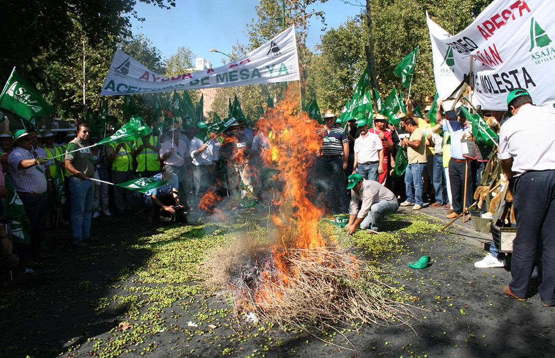Las asociaciones agrarias piden a Planas que intervenga ante la crisis de precios del aceite o se movilizarán