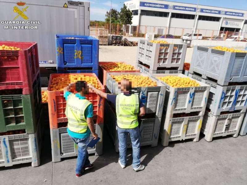 La Guardia Civil detiene a 14 personas e investiga a otras 144 por el robo de 350.000 kg de naranjas