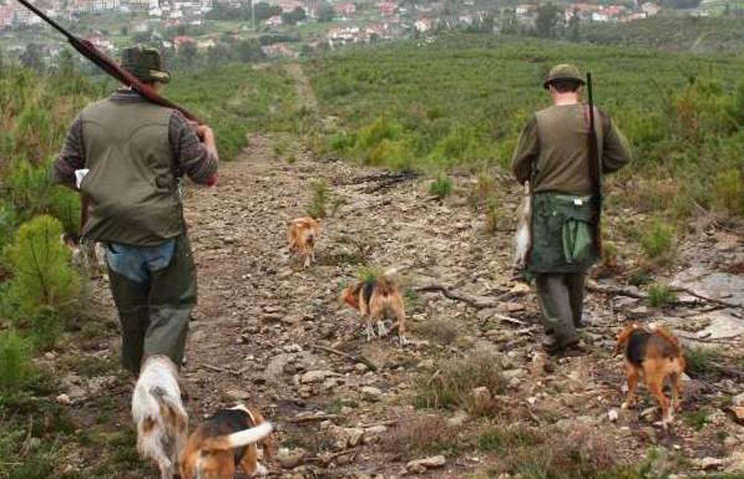Suspendido cautelarmente el decreto de caza y control de fauna de Castilla y León