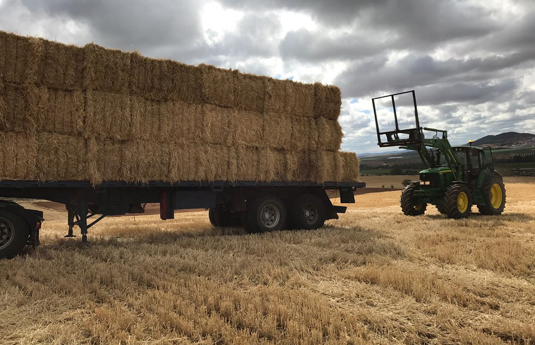 Ciento noventa mil toneladas de paja se quedarán en el campo en León por falta de comprador