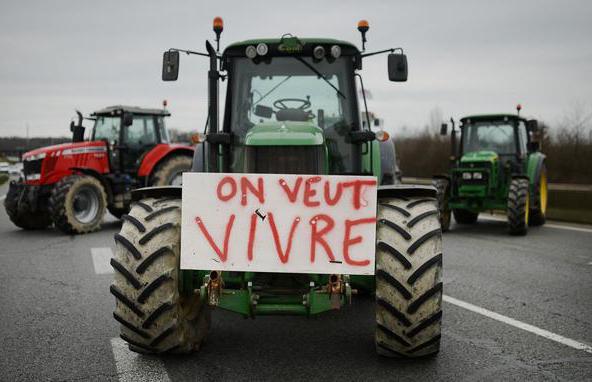 Suicidios de agricultores en Francia: Una plaga que sigue por causas donde los españoles podrían reflejarse