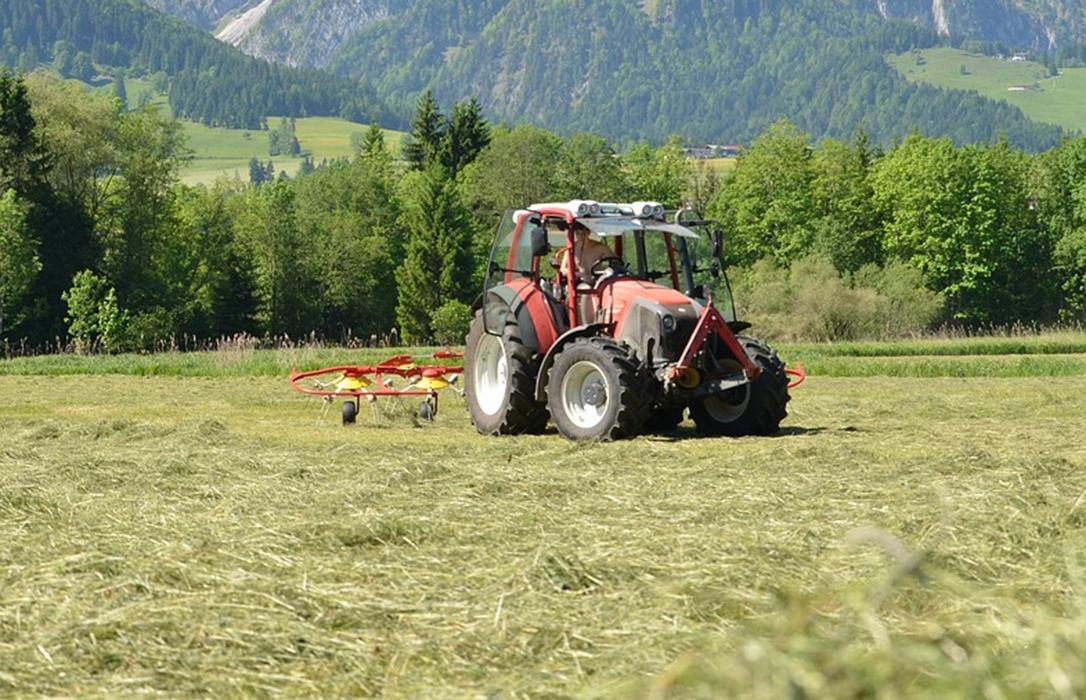 Planas garantiza que no subirá el diésel a los agricultores pero no que pueda frenar la tarifa eléctrica
