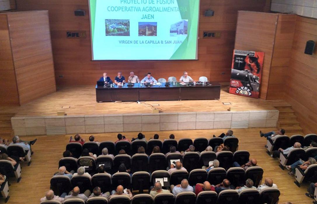 Una treintena de cooperativas andaluzas apuesta por la integración, fusión y creación de grupos de comercialización