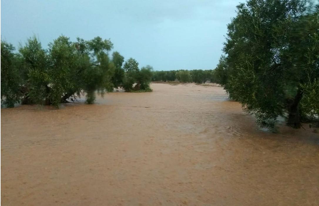 Daños lluvias: «Si pasamos una ITV de nuestros vehículos, la administración debe superar una de limpieza de cauces»