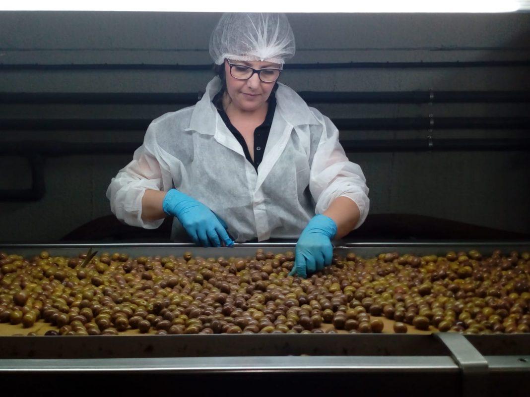 Manzanilla Oliva nombra nuevo presidente y se convierte en proveedor de aceituna de mesa de Mercadona