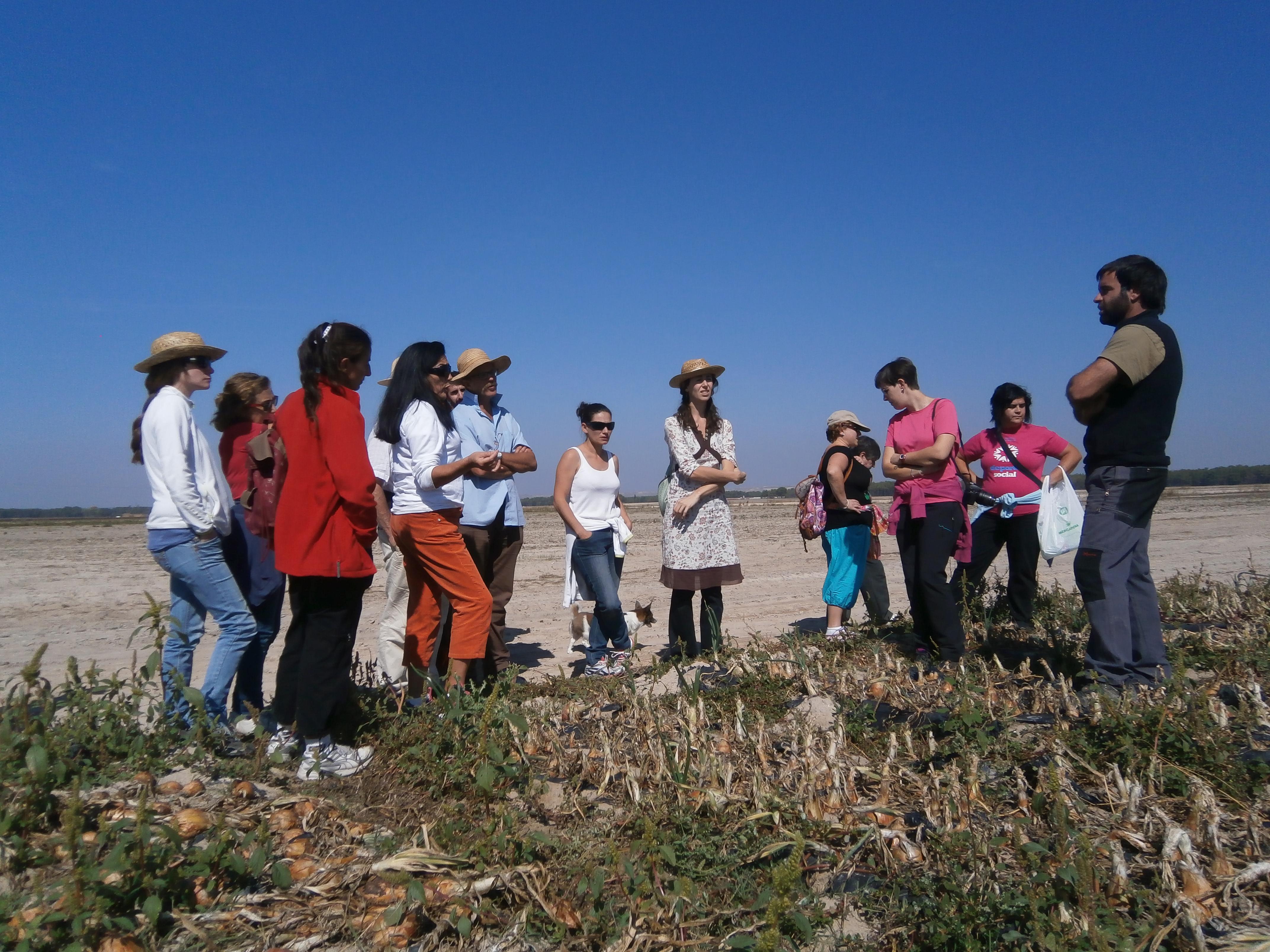 Investigadoras, agricultoras, técnicas y empresarias agrícolas europeas trabajan para diversificar cultivos en el proyecto Diverfarming