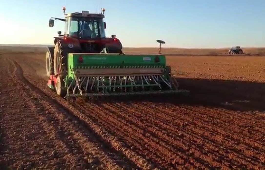 La climatología provoca una caída significativa de la superficie de siembra de trigo para ser sustituida por la cebada
