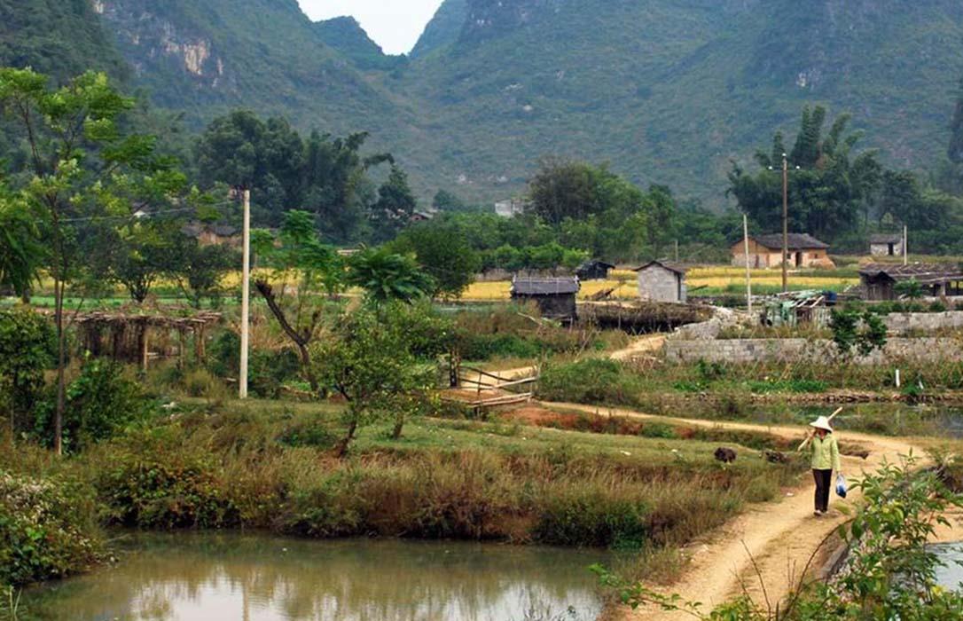 China 'exportará' el enfoque de gestión participativa a sus territorios rurales de la mano de ELARD-REDR