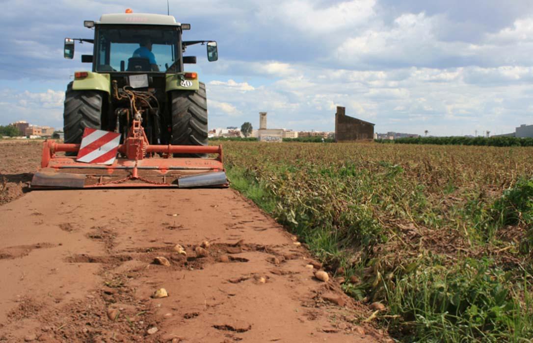 Agricultores y ganaderos cobrarán desde el día 1 los 56,6 millones de la reserva de crisis de la PAC no gastados