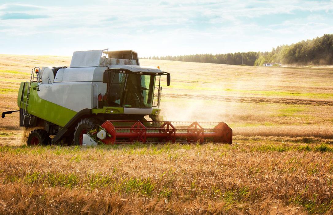 La cebada sigue imparable y mantiene su momento dulce de todo el sector con nuevas subidas generalizadas