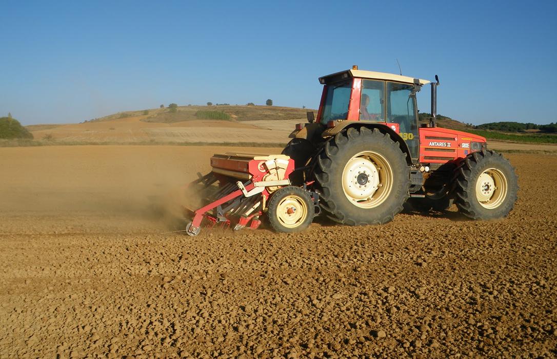 El campo de CyL afronta el final de noviembre con la mitad de la superficie de cereal sin sembrar