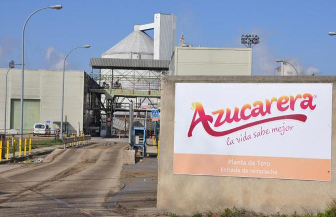 El 'virus amarillo' que afecta a gran parte de Europa reducirá la producción de remolacha y encarecerá el precio del azúcar