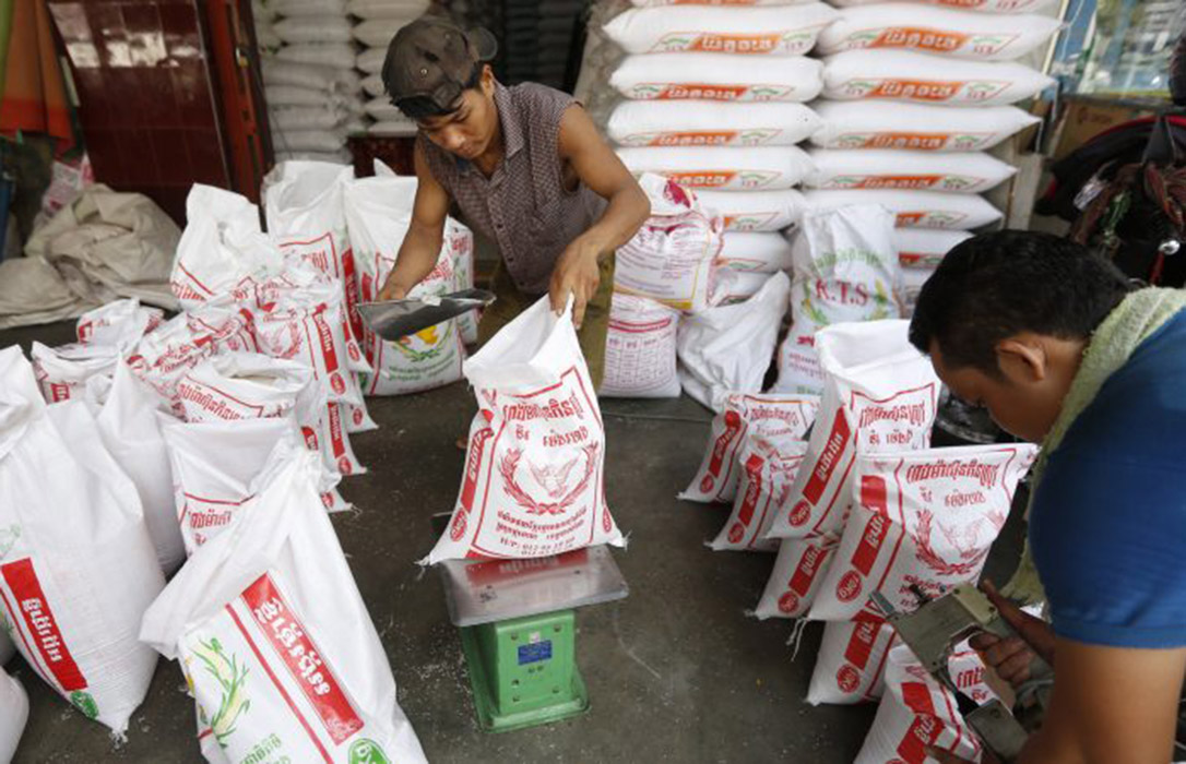 Myanmar burla la clausula de salvaguarda y dispara un 1.080% sus envíos de arroz japónica a la UE