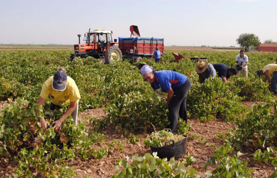 El trasvase Tajo-Segura genera cerca de 140.000 empleos anuales en Alicante, Murcia y Almería
